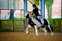 Bedgebury - Affiliated Dressage - Class 1 - Prelim 15 - 27 Oct 2012