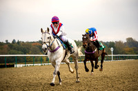 Eridge PC - Racing at Lingfield Park - 26th Oct 2015